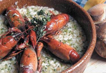 Cangrejos de río con arroz cremoso