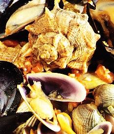 Surtido de conchas de marisco con Chardonnay