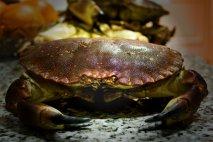 Receta de Buey de mar cocido