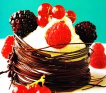 Receta de Nido de chocolate con nata y frutas del bosque