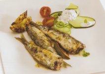 Receta de Sardinas marinadas con cilantro y ensalada de yogur griego y pepino