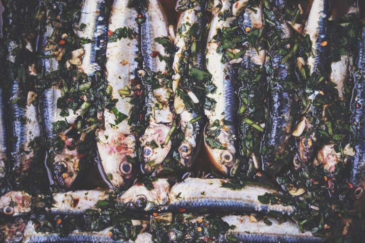 Recetas de sardinas